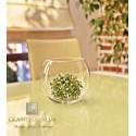 Ваза стеклянная-аквариум 1,2 литров, h-120мм, d-150мм